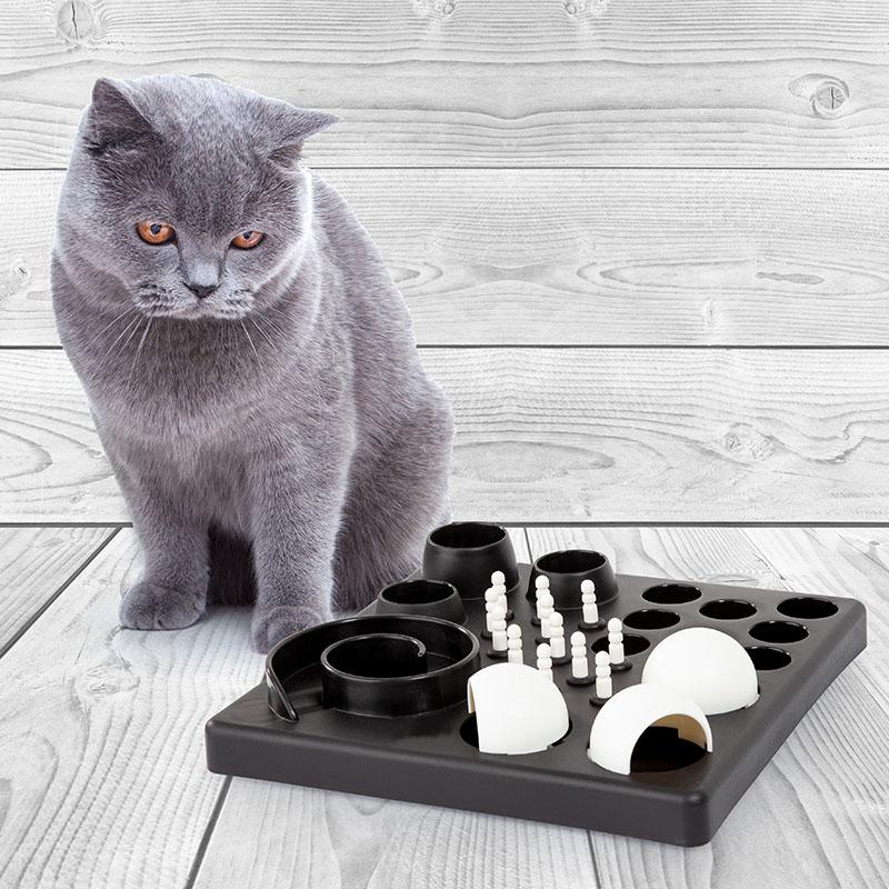 Catlove toy genius discover