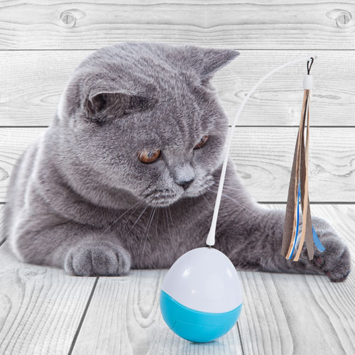 edupet cat love toys