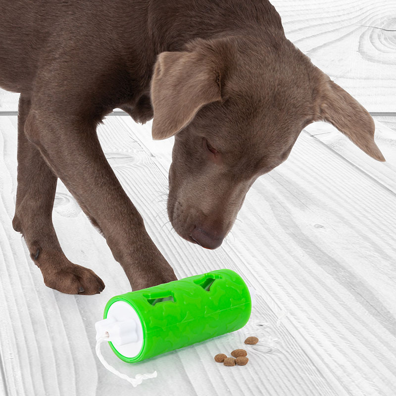 Edupet dog toy dog n roll learning