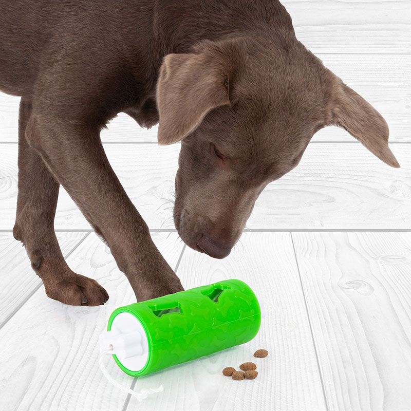 edupet dog toys and feeding accessories