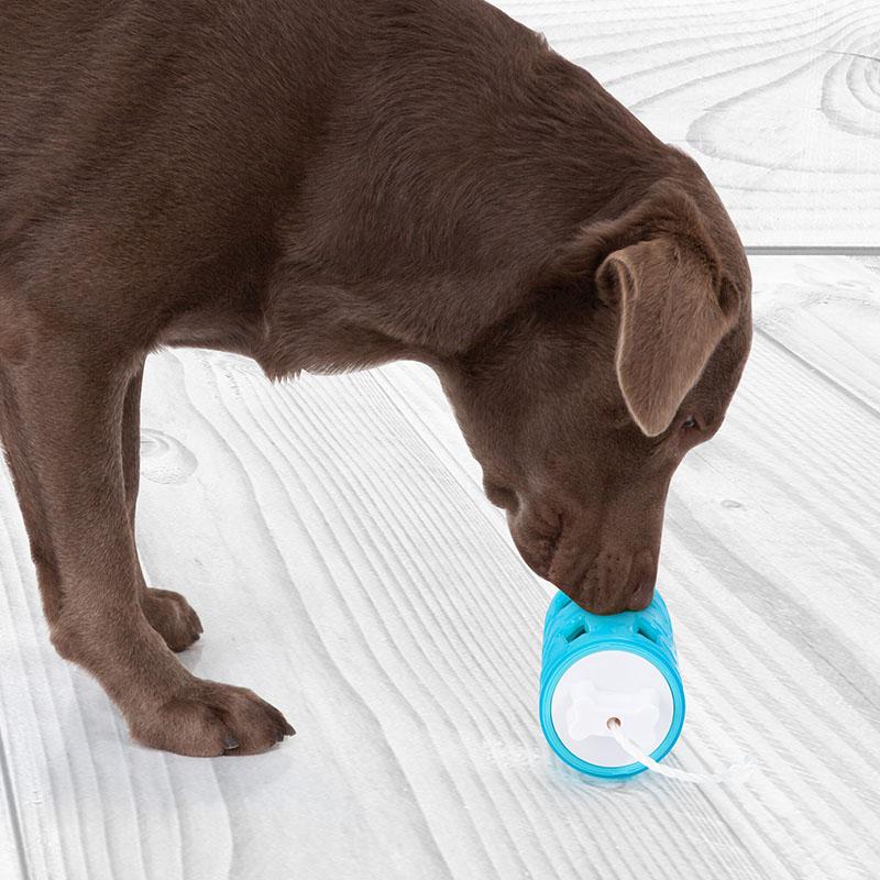 Edupet dog toy dog n roll smell