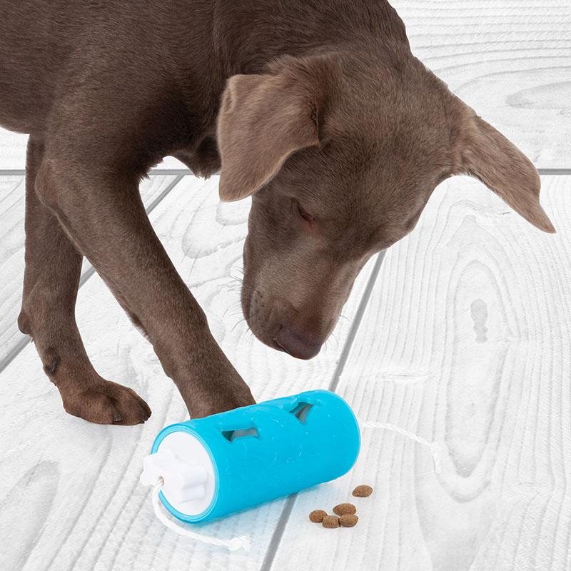 Edupet dog toy dog n roll lock level 2