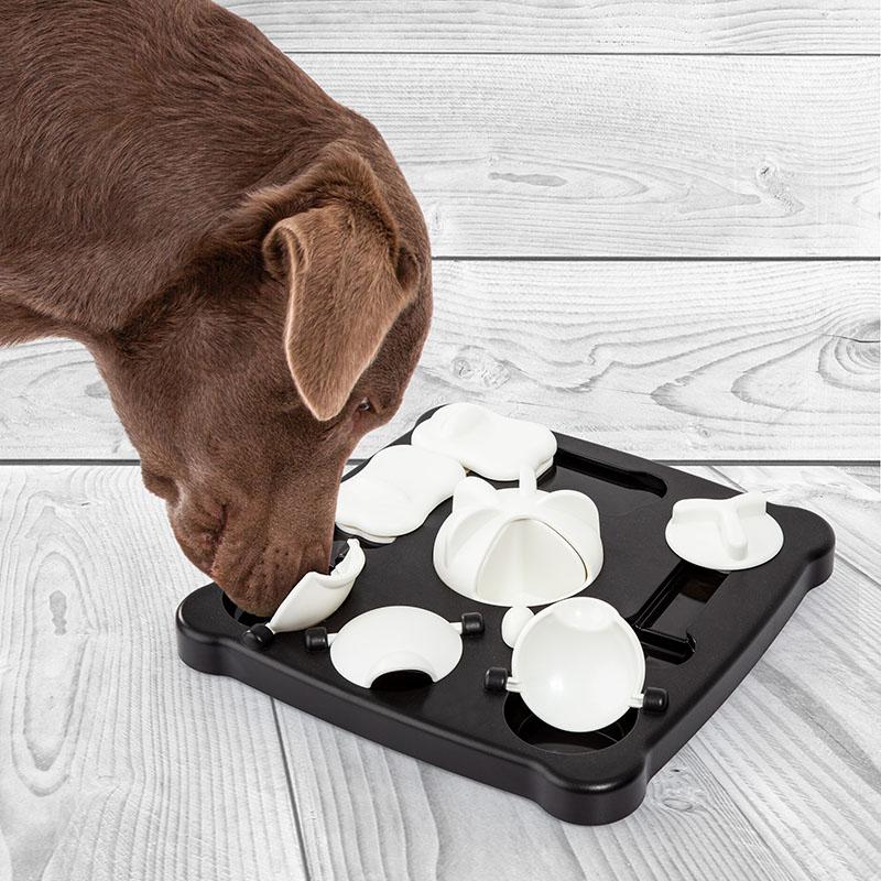Dog toy TRICKY ACTIVITY lids