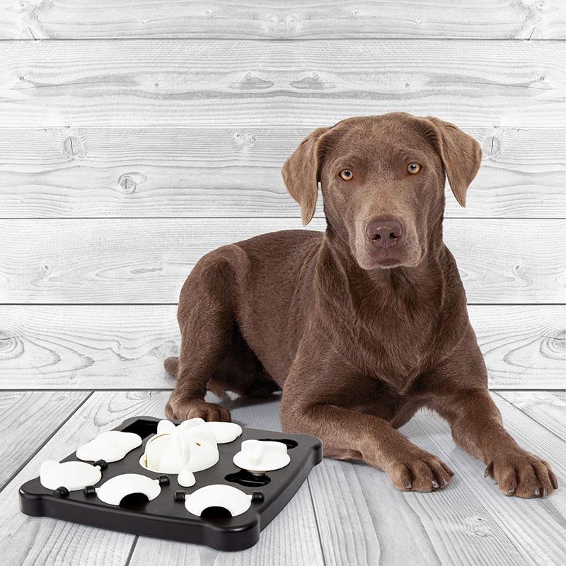 Dog toy TRICKY ACTIVITY training